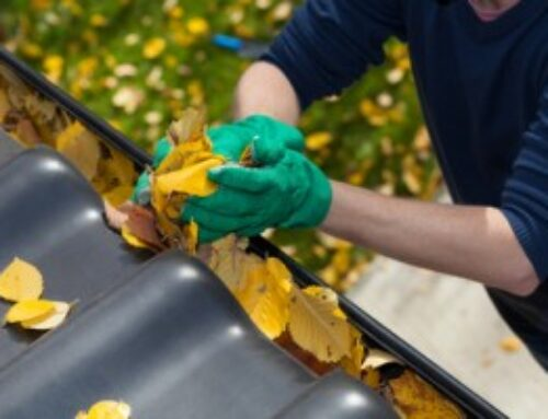 Checklist: Is Your Roof Ready for Spring?